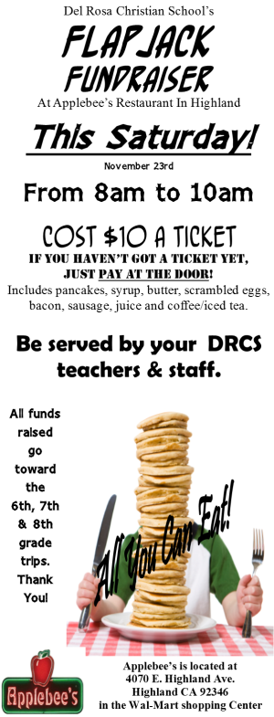 Flapjack Image